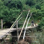 Motorbiking over a bamboo bridge set up during rainy season